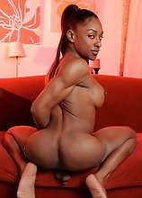 Ebony transsexual goddess showing it all